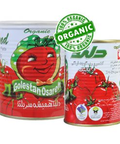 رب گوجه فرنگی ارگانیک دلند 800 گرم