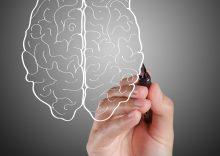 افزایش عملکرد مغز